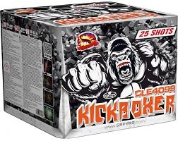 Kickboxer 25 rán